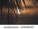 Dramatic Tropical Sunset
