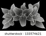beautiful bouquet of lilies.... | Shutterstock .eps vector #133574621