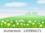 spring field of flowers of...