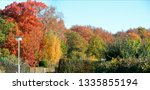 panorama picture of a forest in ... | Shutterstock . vector #1335855194