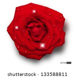 Vector Red Rose With Water...