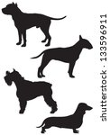 ,american,animal,breed,bull terrier,dachshund,dog,dog show,icon,pet,pit bull,schnauzer,sign,silhouette,staff