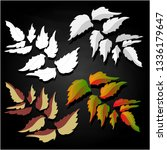 leaf autumn colorful... | Shutterstock . vector #1336179647