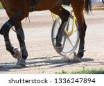 legs of a trotter horse and... | Shutterstock . vector #1336247894