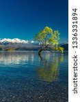 the famous lonely tree of lake... | Shutterstock . vector #1336331894