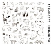 Stock vector animals of the world illustrations hand drawn line vector set 1336454591