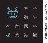 accessory icons set. kitten...