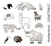 american animals hand drawn...   Shutterstock .eps vector #1336779617