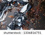 crumpled black and white... | Shutterstock . vector #1336816751