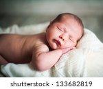 little newborn baby boy 13 days | Shutterstock . vector #133682819