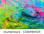 holi color powder on sunglasses.... | Shutterstock . vector #1336984424