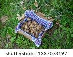 A Box Of White Truffles