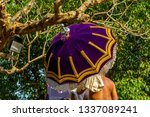 pooram  the traditional temple... | Shutterstock . vector #1337089241