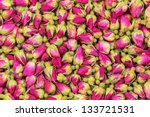 Tea Rose Flowers  Background