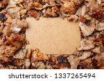 shawarma  gyros  traditional... | Shutterstock . vector #1337265494