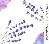 image with lavanda  handdrawn... | Shutterstock . vector #1337267621
