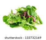 salad mix with rucola  frisee ... | Shutterstock . vector #133732169