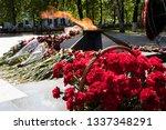eternal fire and flowers....   Shutterstock . vector #1337348291