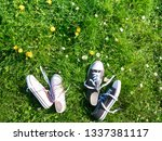 spring background sneakers on... | Shutterstock . vector #1337381117