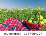 picnic background with basket... | Shutterstock . vector #1337484227