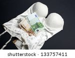 Small photo of Lingerie and money concept: Love for money
