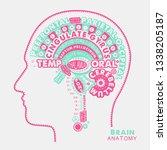 brain anatomy typographic...   Shutterstock .eps vector #1338205187