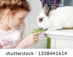 little girl playing with real...   Shutterstock . vector #1338441614