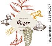 hand drawn ginger illustration. ... | Shutterstock .eps vector #1338491027