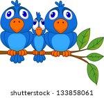 smaller bird squeezed by bigger ... | Shutterstock . vector #133858061