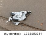white torn plastic bag lying on ... | Shutterstock . vector #1338653354