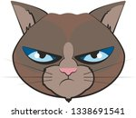 grumpy cat head from the front | Shutterstock .eps vector #1338691541