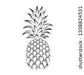 pineapple icon isolated on... | Shutterstock .eps vector #1338824531