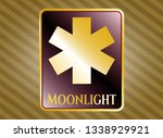 golden emblem with emergency... | Shutterstock .eps vector #1338929921