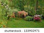 Blooming Flowers In Summer Yard ...