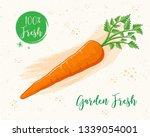 carrot vector illustration  | Shutterstock .eps vector #1339054001