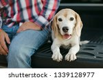 man and his puppy dog resting... | Shutterstock . vector #1339128977