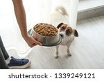 woman feeding her cute dog at... | Shutterstock . vector #1339249121