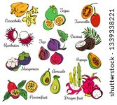 exotic fruits. all elements are ... | Shutterstock .eps vector #1339338221