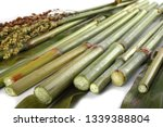sugar cane isolated on white   Shutterstock . vector #1339388804