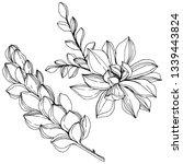 jungle botanical succulent... | Shutterstock . vector #1339443824