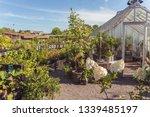 rosendals garden in stockholm ... | Shutterstock . vector #1339485197