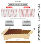 sound pitch infographic diagram ... | Shutterstock .eps vector #1339497161