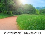 park with pathway and trees | Shutterstock . vector #1339502111