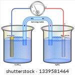 galvanic cells or voltaic cells    Shutterstock .eps vector #1339581464