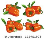 set of orange pepper with... | Shutterstock .eps vector #133961975