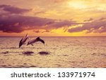 two dolphins in the background... | Shutterstock . vector #133971974