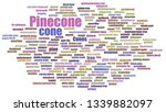 Pinecone Word Cloud Neatly...