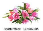 watercolor tulips flowers | Shutterstock . vector #134002385