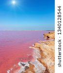 sunshiny pink extremely salty... | Shutterstock . vector #1340128544