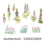 isolated image of blooming... | Shutterstock . vector #1340222834
